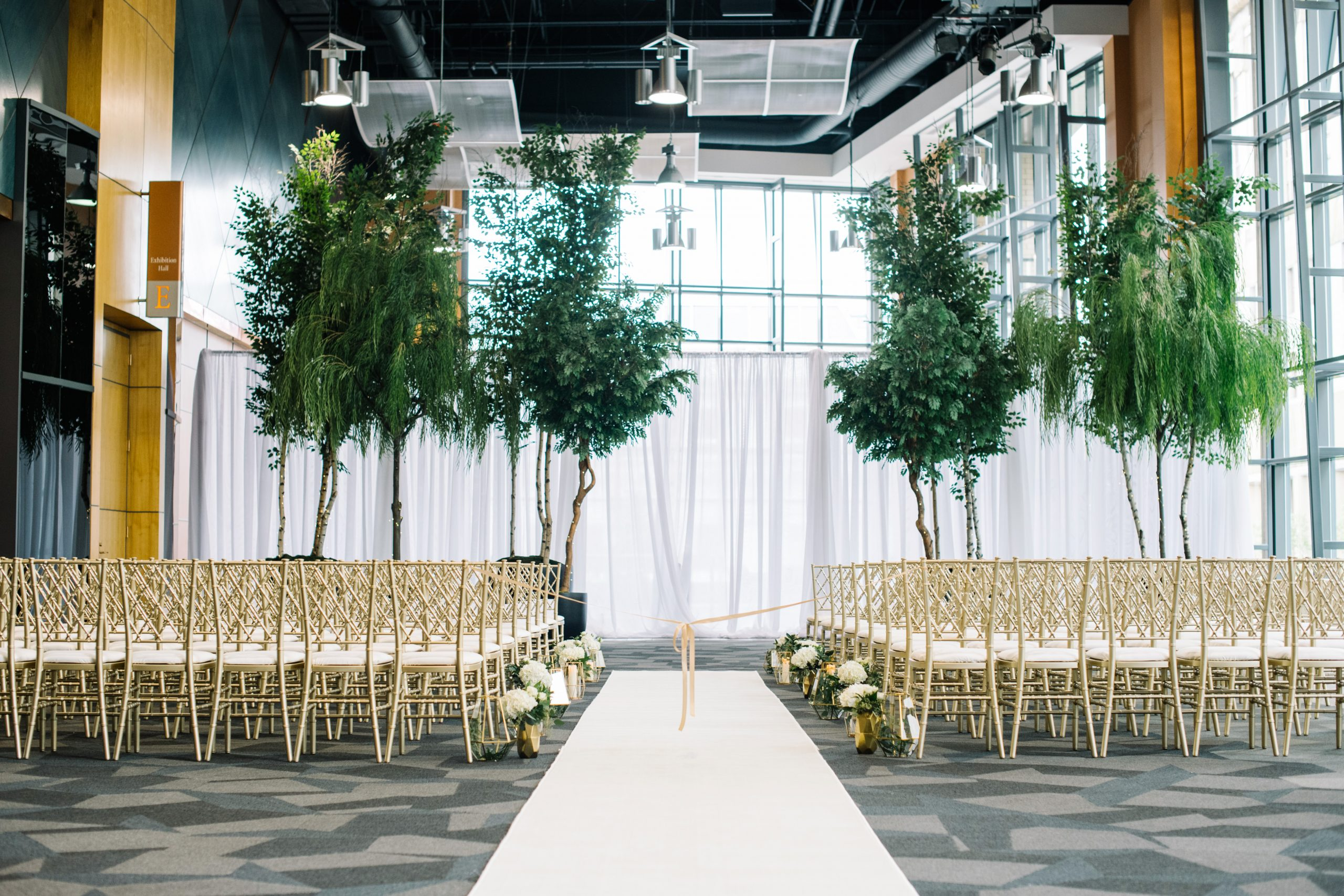Mixed tree variety, birch, aspen and willow, in fibreglass planters, movable for various event decor at the Calgary Telus Convention Centre