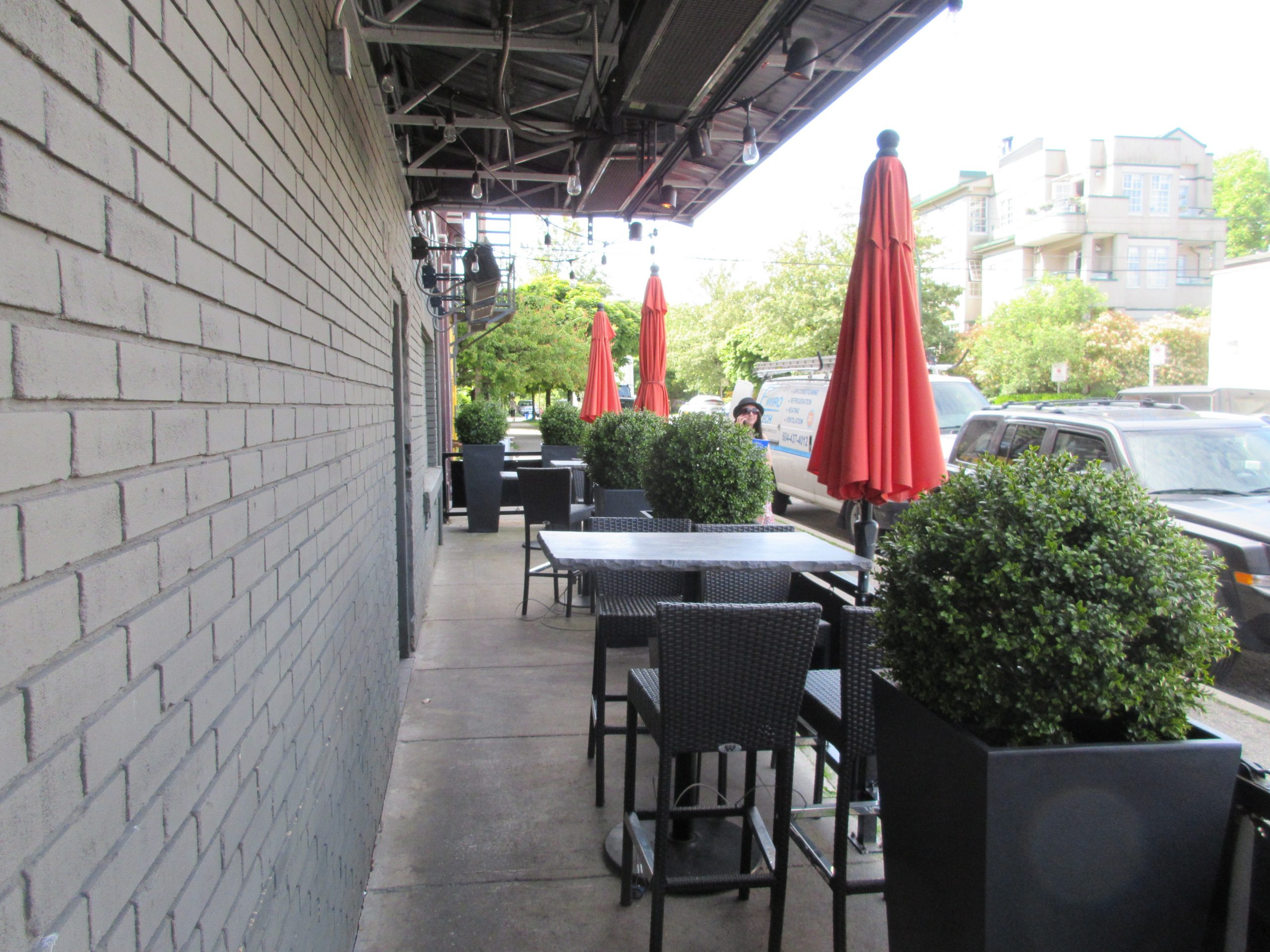 Boxwood single ball topiaries on natural wood trunks in cement tapered planters, patio decor