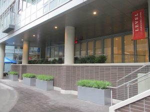Large scale commercial planters with artificial grasses, outdoor driveway entrance