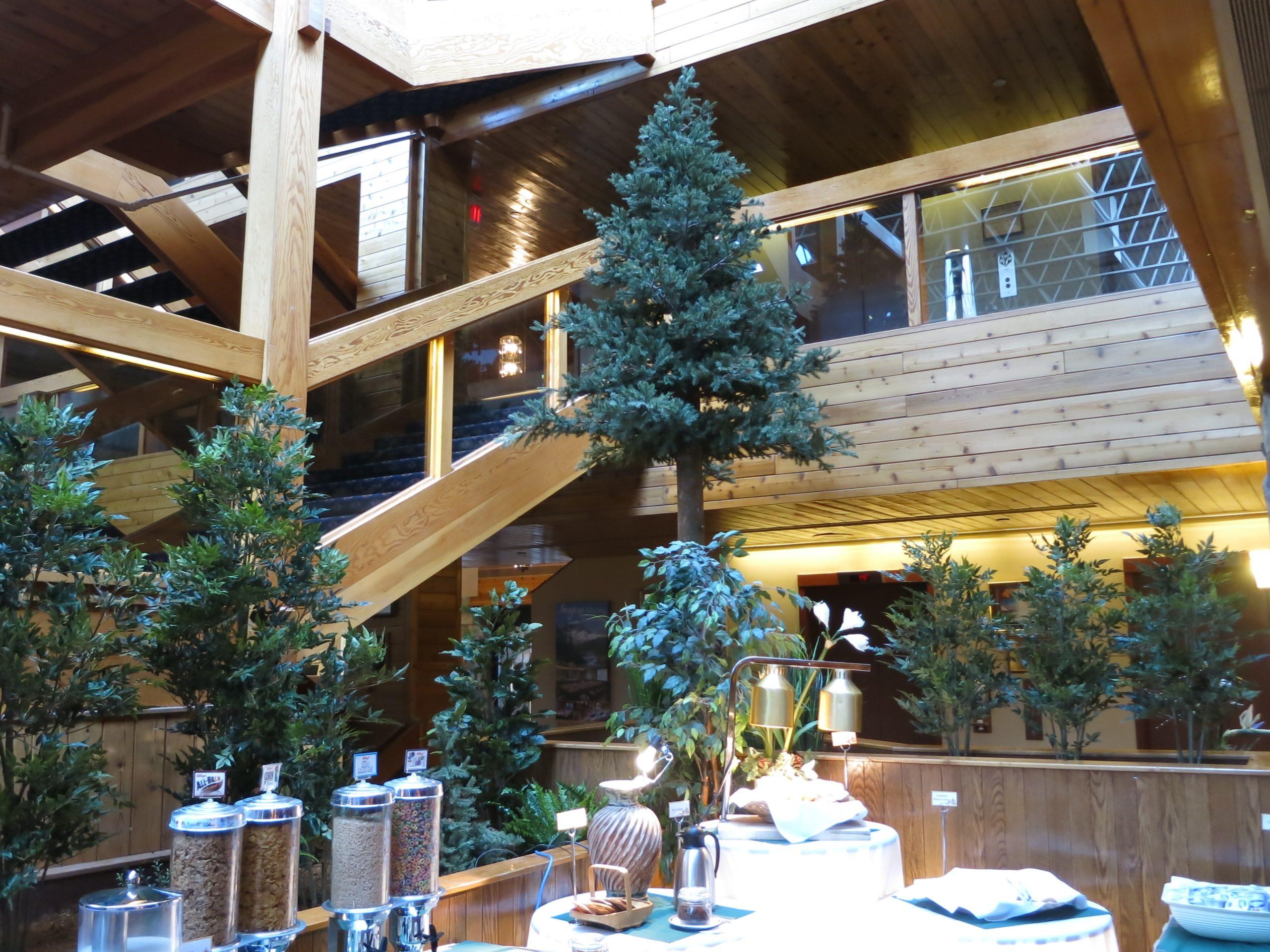 Oversized evergreen display with tall evergreen trees in hospitality space of Sawridge Inn Edmonton