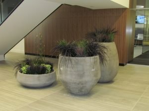 Cement planters with mixed artificial grasses, large scale, in office lobby