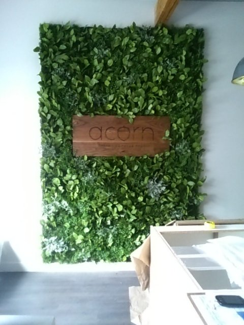 Artificial Green wall, unframed with custom sign by client, with salal, ivy and dusty miller