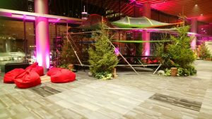 Multiple live evergreen trees for west coast theme and brand promotional event