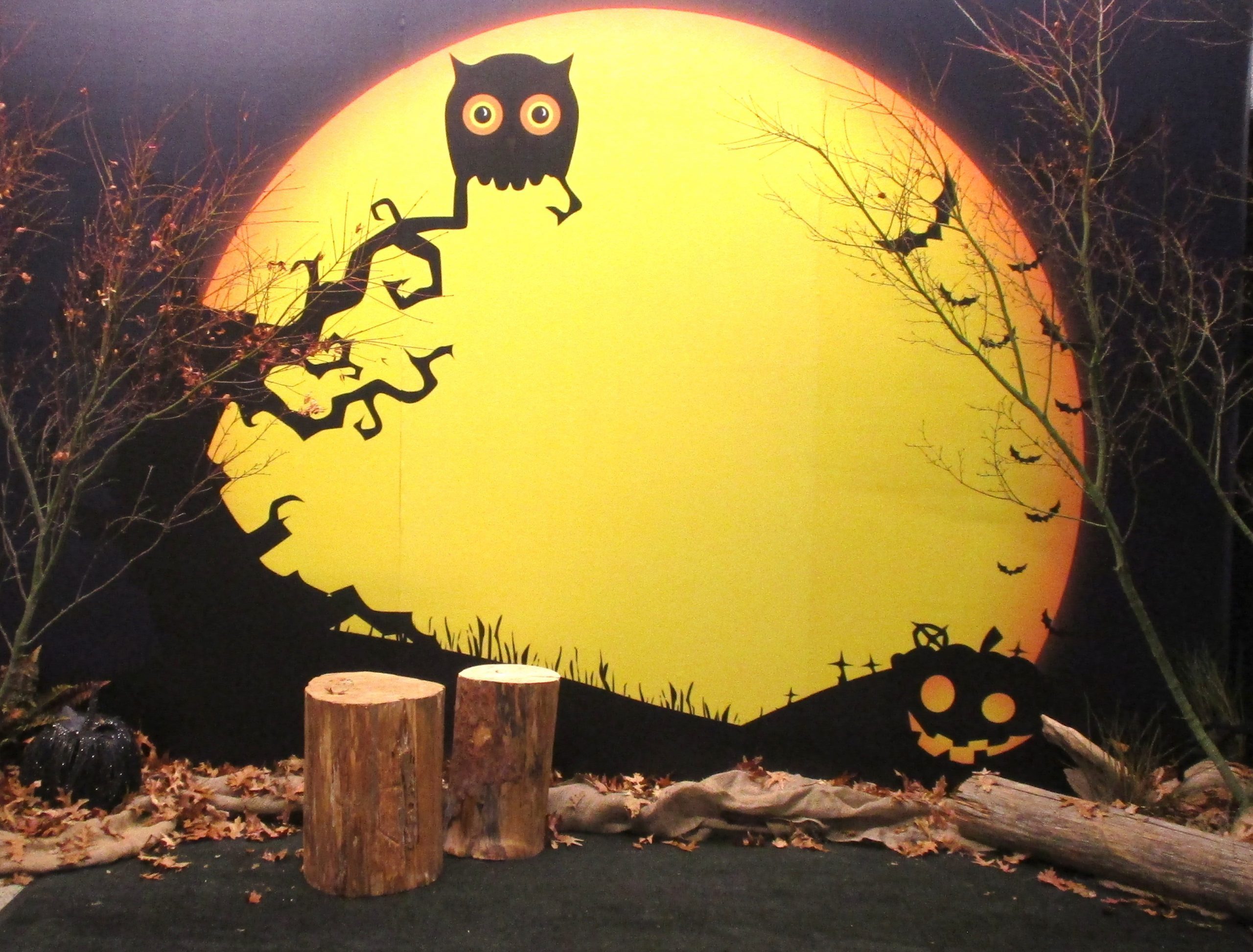 Photo opportunity or backdrop, halloween and fall themed