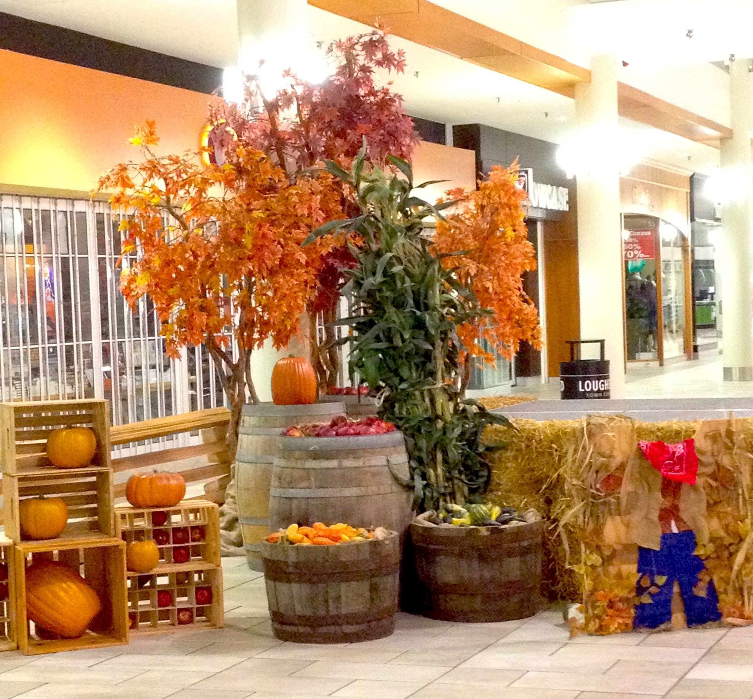 Harvest and fall display featuring pumpkins, fall trees and hay bails