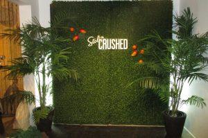 Promotional event for Stoli vodka photo backdrop with boxwood hedges, fake mangos and custom logo signage