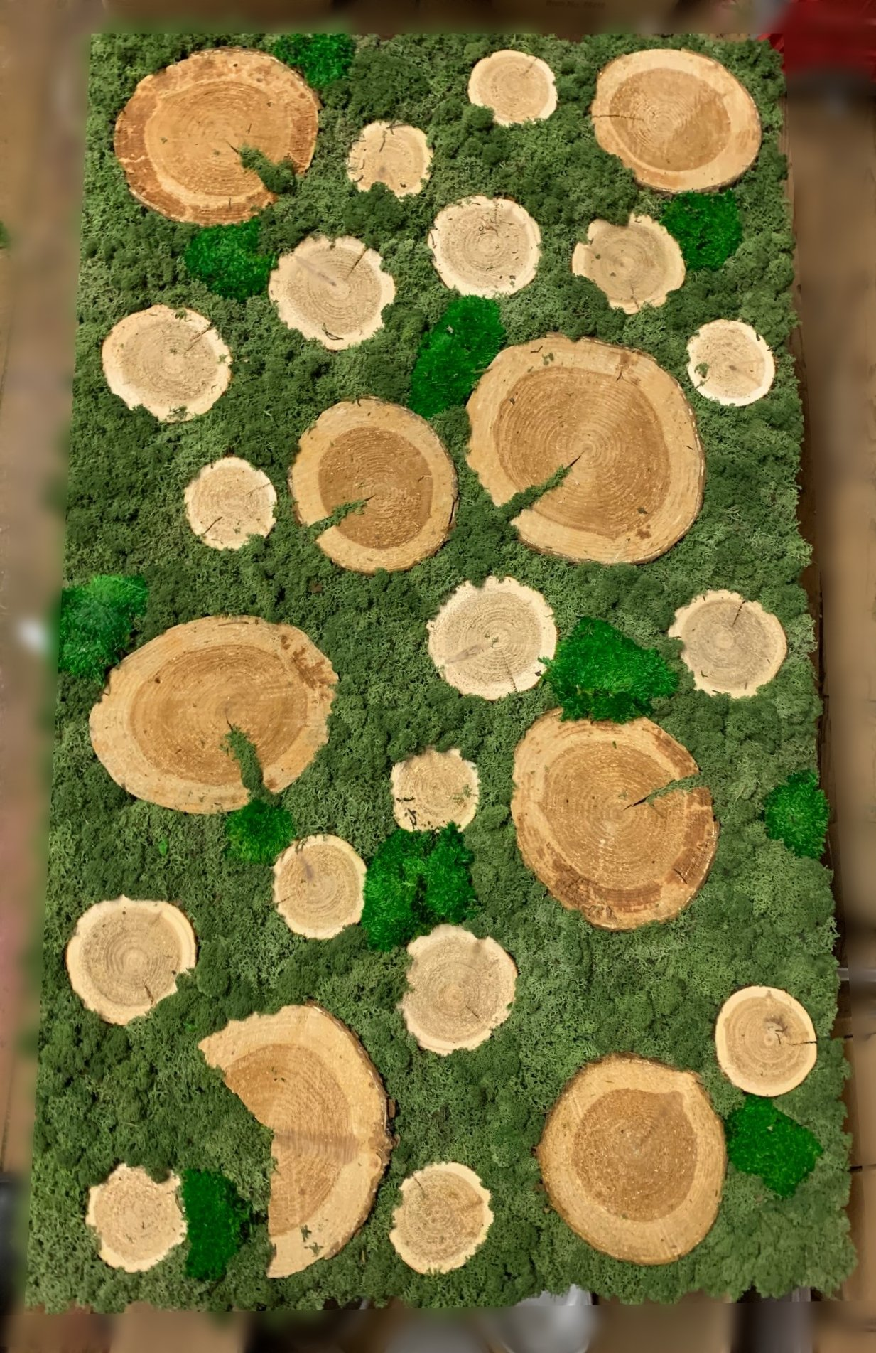 Artificial Green Wall art panel with preserved moss and tree wood cookie accents