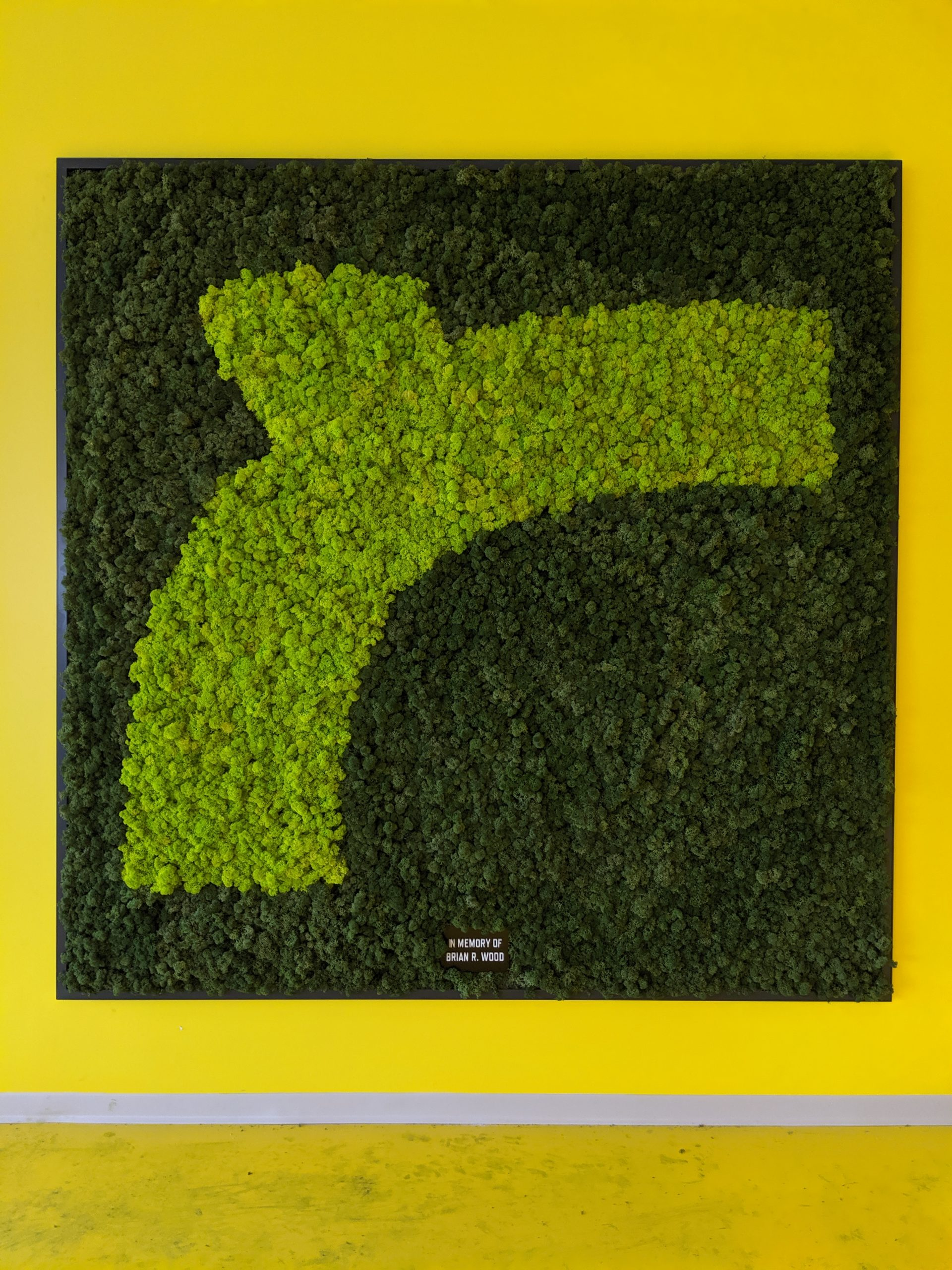 All preserved moss wall utilizing two toned moss to create clients logo, framed in clients steel frame