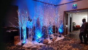 Winter wonderland themed event with birch LED trees and ice crystal trees with blue uplighting and snowblanket ground cover