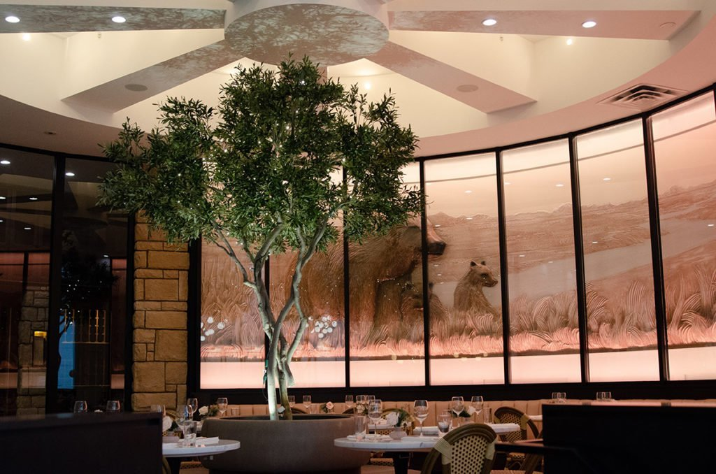 Single olive tree as banquette focal point in dining room at Flores and Pine restaurant in Calgary