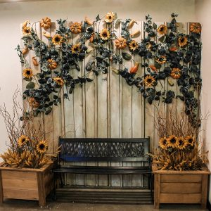 Harvest themed barn board backdrop with sunflowers and bench for photo op