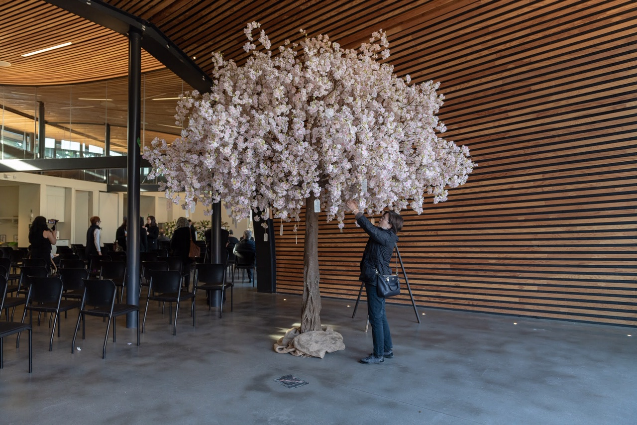 Cherry blossom canopy tree with lady hanging a wish on the tree at a celebration of life