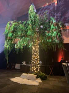 large canopy tree with willow foliage and foam trunk, dressed in twinkle lights and park picnic decor under the tree