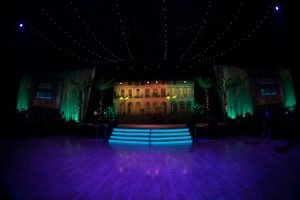 Stage decor flanked with large washingtonian palms for tropical themed event decor