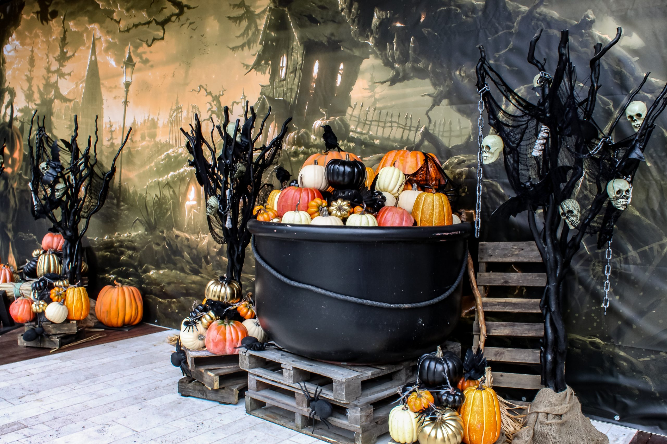 Spooky Halloween oversized cauldron with pumpkins, pallet decor and spooky trees. Spooky forest backdrop.