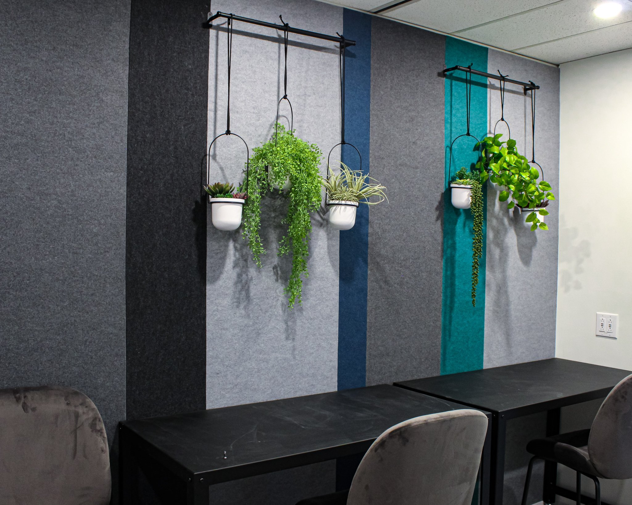 hanging planters from rope on wall bar anchor filled with artificial mixed greenery including baby tear, air plants and succulents, in office building coffee bar