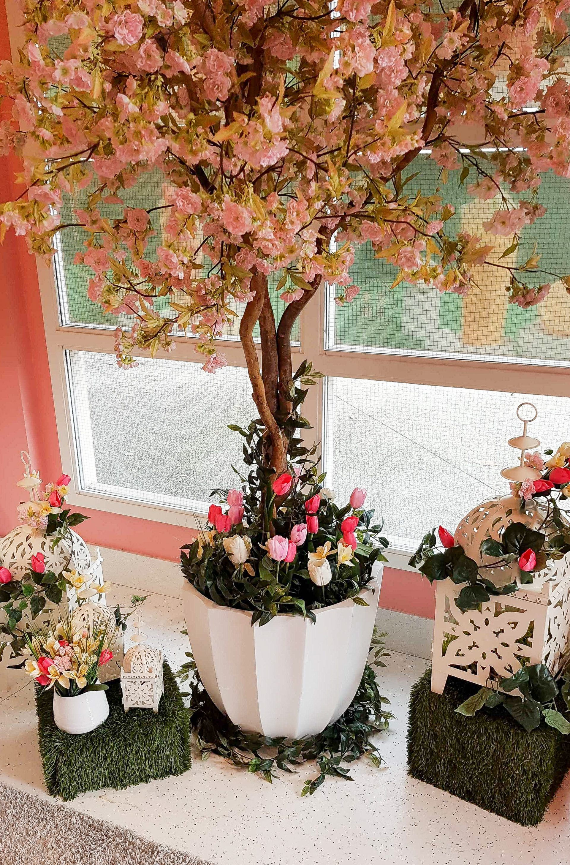 close up of spring vignette cherry blossom tree in white planter with tulips, grass boxes and lanterns