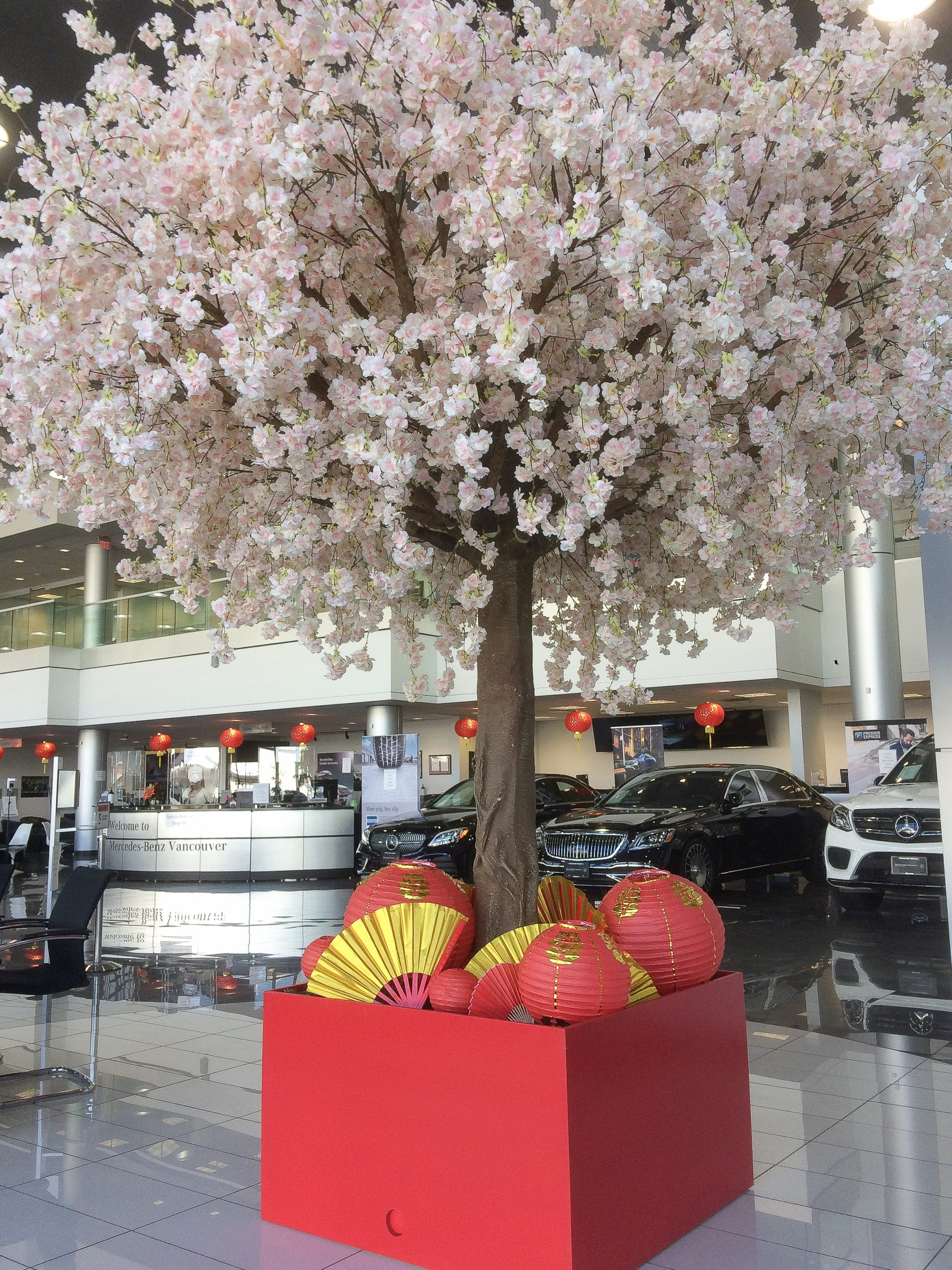 Oversized pink cherry blossom tree in large red planter with lanterns and fans in car dealership