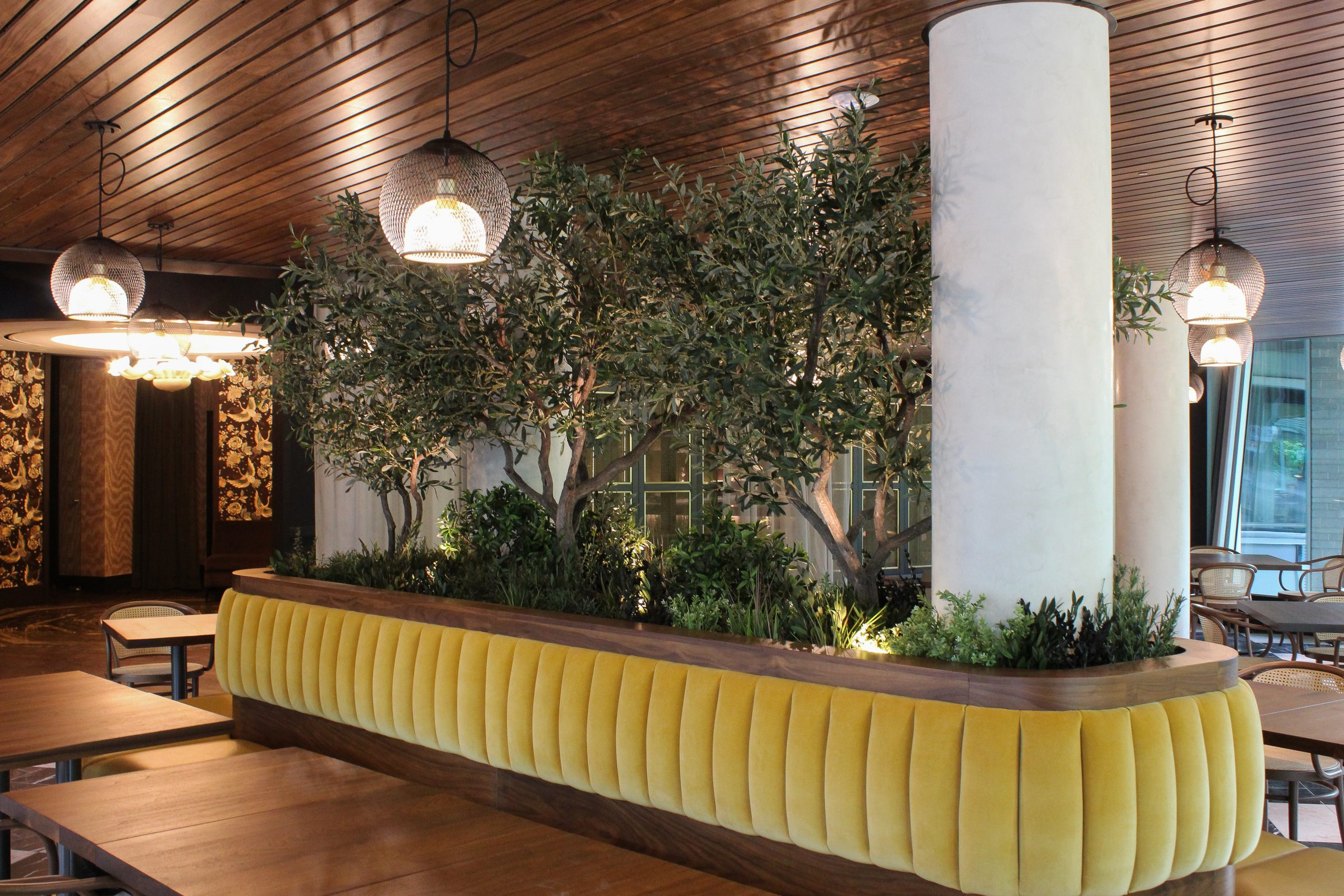 Custom artificial olive trees on natural wood trucks with mixed greenery ground cover set in yellow tufted banquette centre