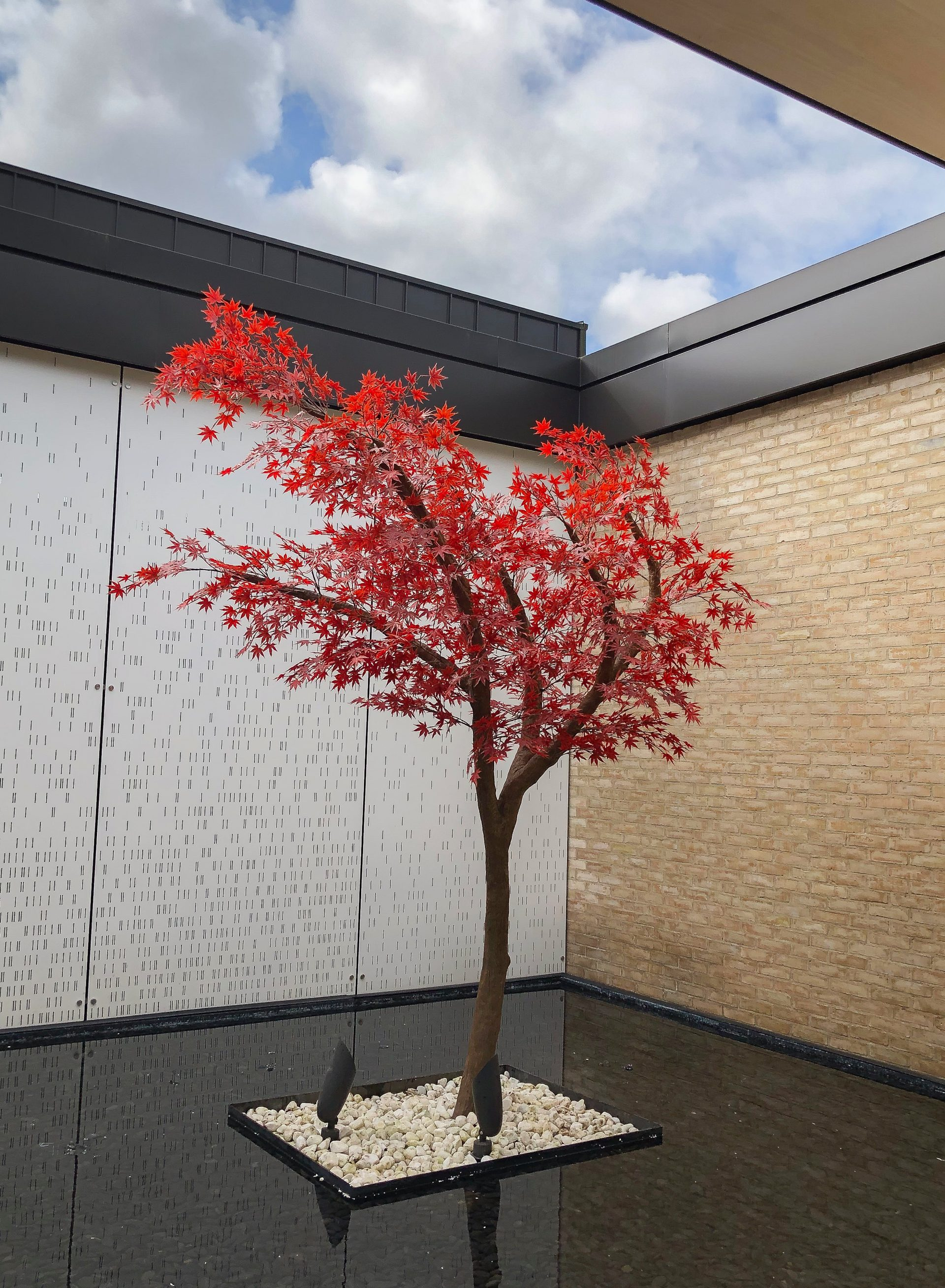 Outdoor artificial red japanese maple tree on natural trunk planted in centre of artificial pond.