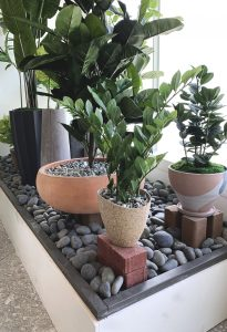 Indoor and Outdoor Artificial Plants for your Space