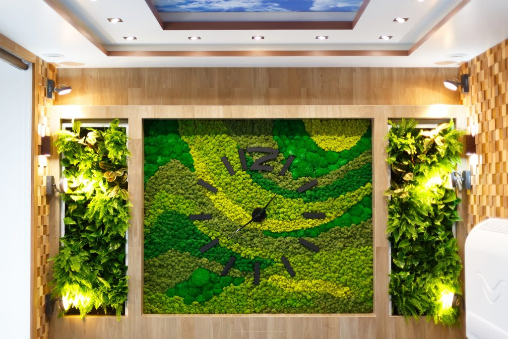 Preserved plants - Moss wall