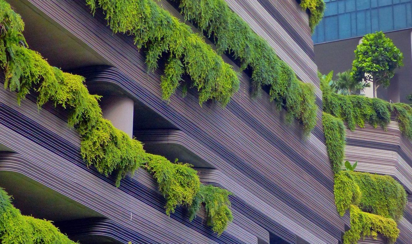 biophilic design on a building's exterior