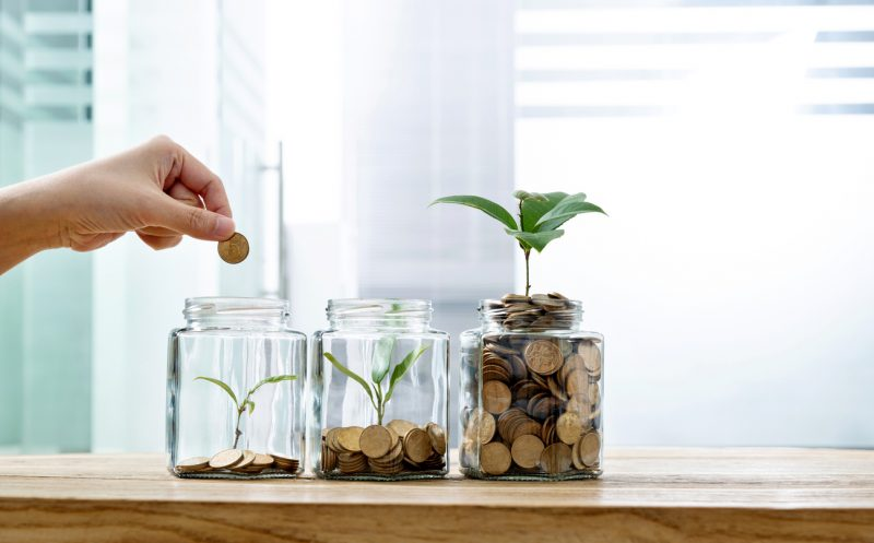 Reasons Fake Plants Are The Most Practical - Price efficient
