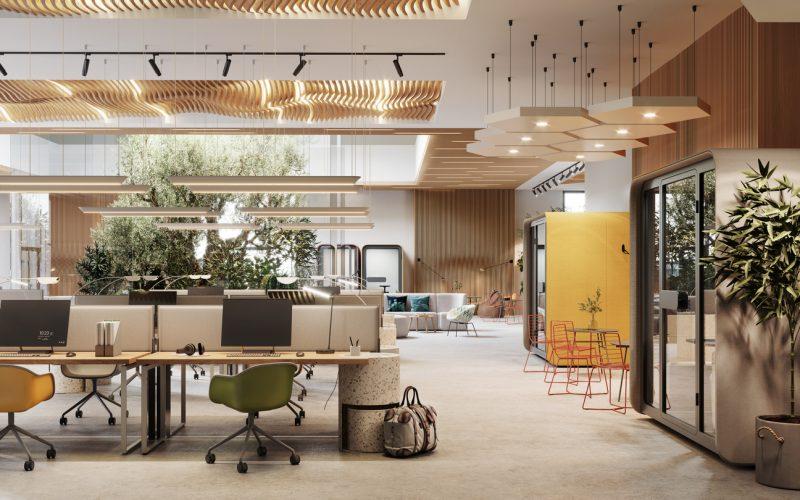 Plants Office Decor Tips